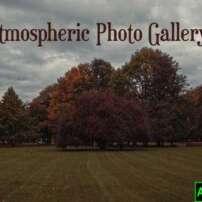 پروژه آماده افترافکت گالری عکس Atmospheric